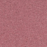 Timberline - Pixel Raspberry
